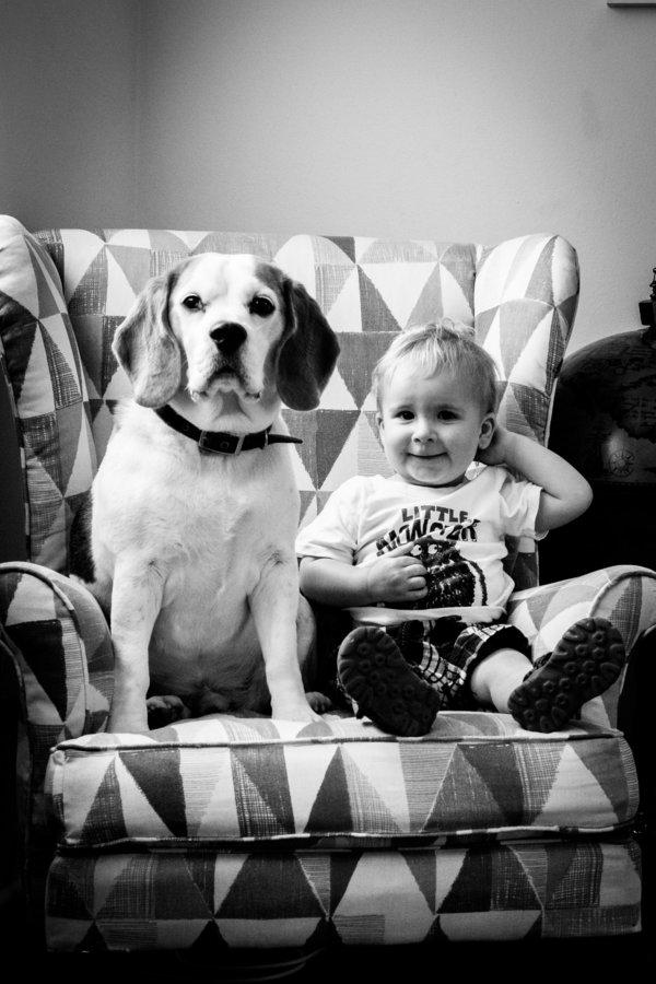 Foto Stan And Jasper 19 © 2017 brilio.net