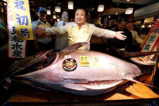 Seekor ikan konsumsi ini terjual hingga Rp 8,5 miliar, wow