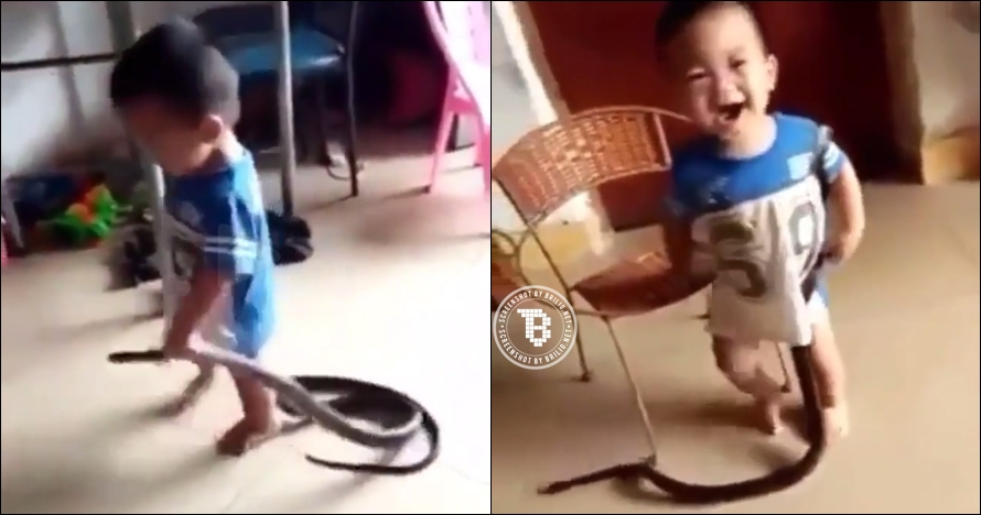 Ulah balita mainan ular ini bikin jantung deg-deg ser