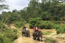 6 Objek wisata alam di Riau ini cocok bagi kamu yang suka berpetualang