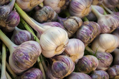 Suka kulineran tak biasa? Festival bawang putih ini patut kamu datangi