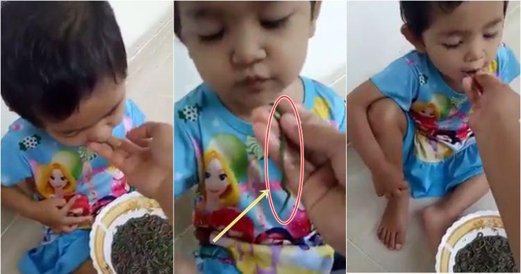 Video anak makan cacing hidup-hidup ini bikin jadi mual nggak sih?