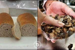 Tampilan menggugah selera, roti ini ternyata dibuat dari tepung kecoak