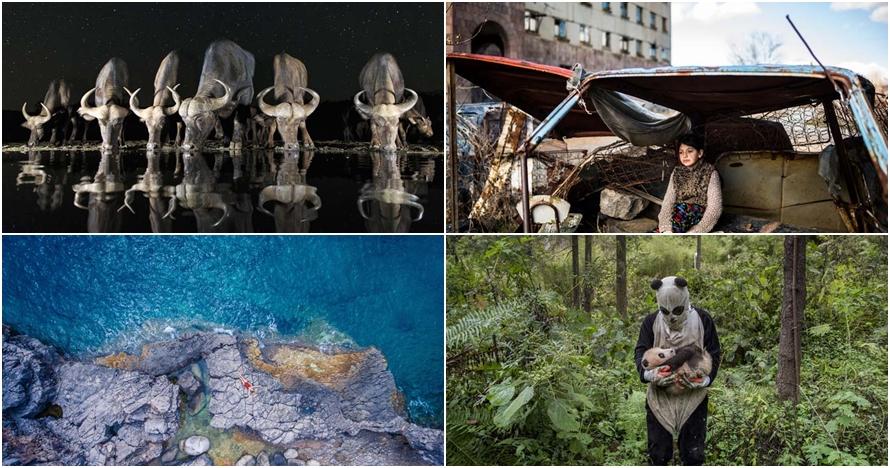 25 Karya foto terbaik Sony World Photography Awards 2017, keren banget