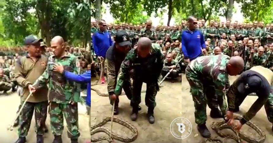 Aksi tentara takut dekati ular ini bikin prihatin tapi juga ketawa