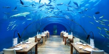 9 Restoran bawah laut ini bikin nggak fokus makan saking indahnya