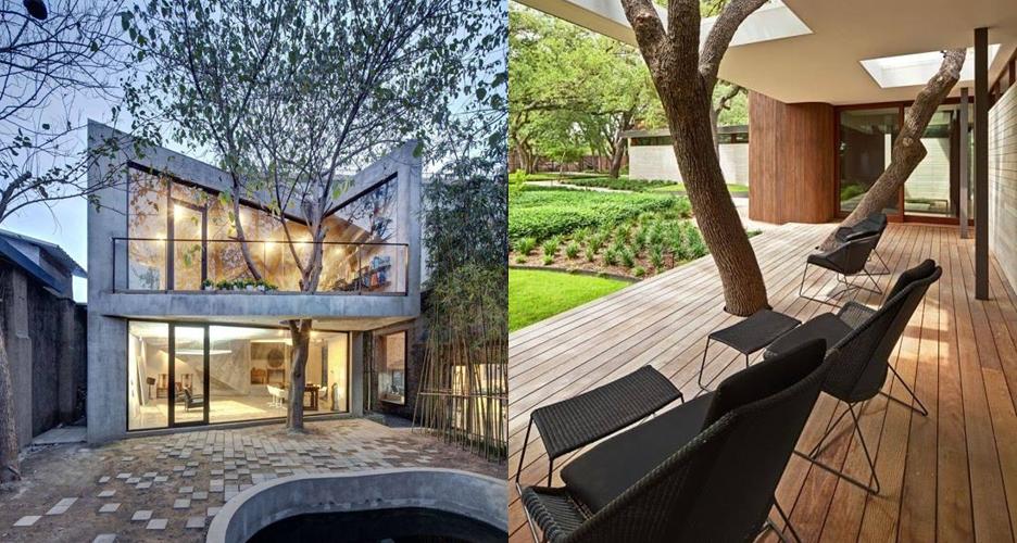 Tak perlu ditebang, 10 rumah berisi pohon ini bisa jadi inspirasi