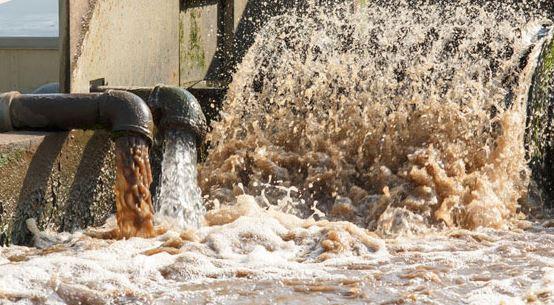 Laporan WHO ini ngeri, 2 miliar orang konsumsi air terpapar tinja
