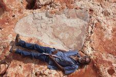 Wow, jejak kaki terbesar dinosaurus ditemukan di Australia