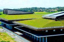 Menengok eksotisme Bandara Blimbingsari, penampakannya adem banget