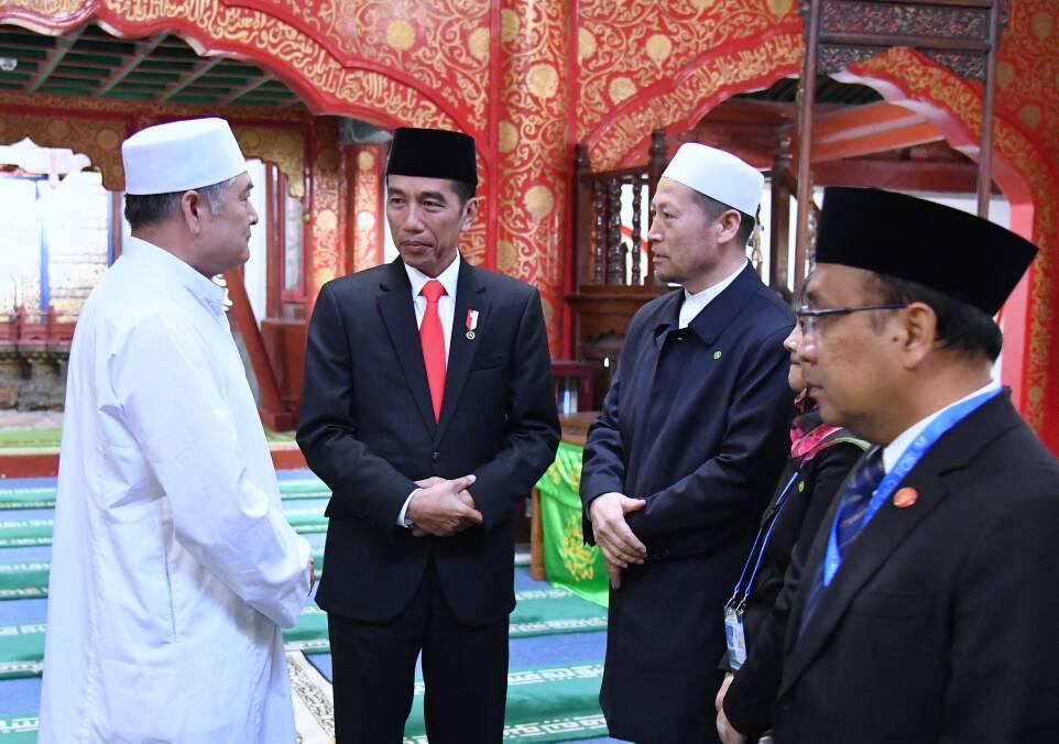 Image Result For Sapi Jokowi