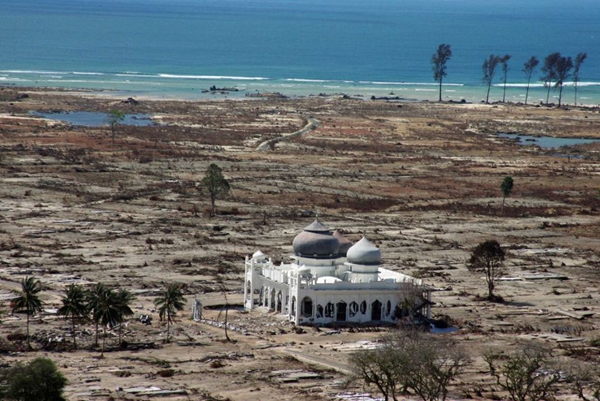 bangunan kokoh saat bencana  © 2017 berbagai sumber