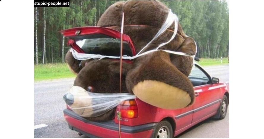 10 Foto lucu saat mobil dipaksa angkut barang yang tak semestinya, duh