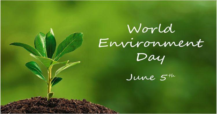 10 Pesan netizen di Hari Lingkungan Hidup, yuk ambil bagian