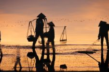 Makin modern, Big Data potensial majukan pertanian Indonesia