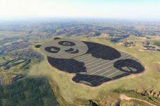 Bentuknya lucu, proyek tenaga surya di China ini tujuannya mulia