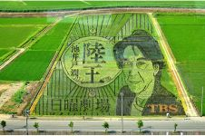 8 Foto sawah ini bukti petani di Jepang kreatifnya kebangetan