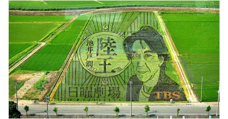 Lihat 8 Foto Sawah Bukti Petani Jepang Kreatifnya Kebangetan Gambar