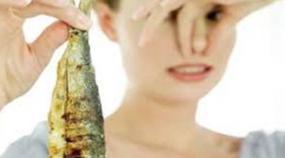 Calon haji dilarang bawa bekal ikan kering, alasannya apa ya?