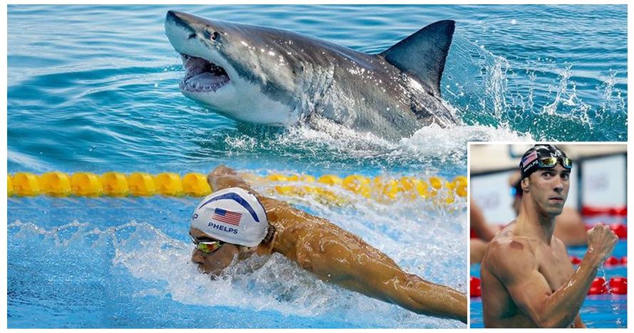 Michael Phelps balap renang lawan hiu, pemenangnya bikin kamu kaget