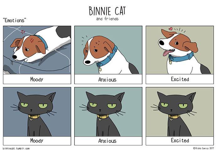Ilustrasi 10 perbedaan kucing dan anjing ini bikin pengen pelihara