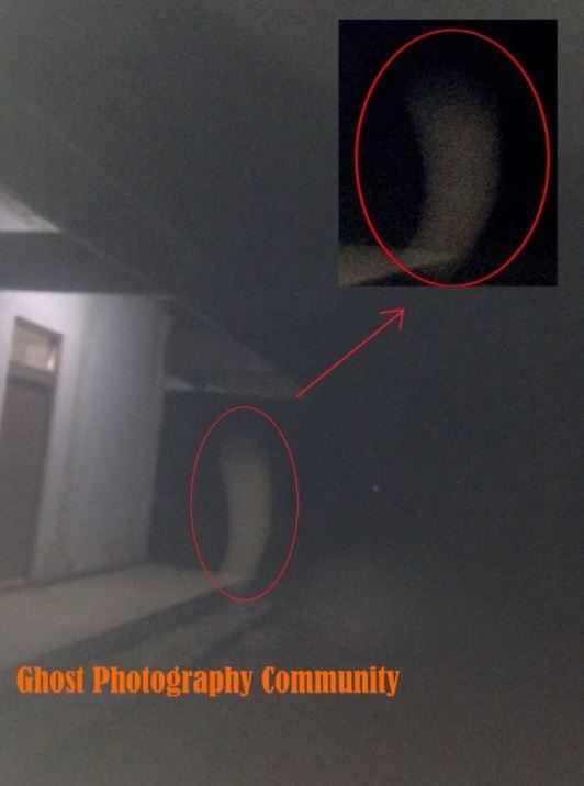 Fakta horor rumah hantu yang diuji tim pemburu hantu © 2017 brilio.net