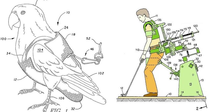 10 Penemuan ini aneh dan tak akan kamu sangka, ada popok khusus burung