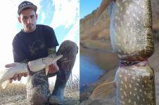 Kondisi miris tubuh ikan ini bukti buang sampah sembarangan berbahaya