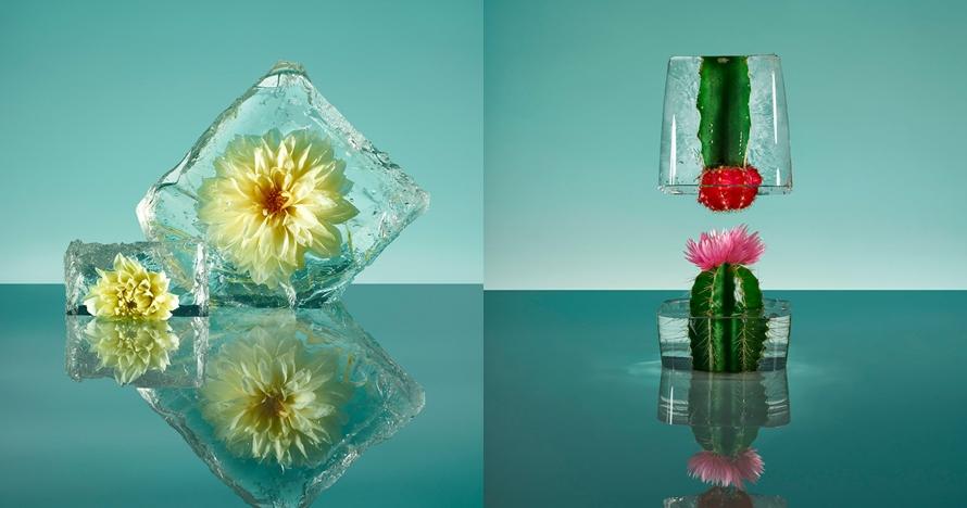 9 Karya bunga beku super unik, bisa jadi inspirasi kado untuk kekasih