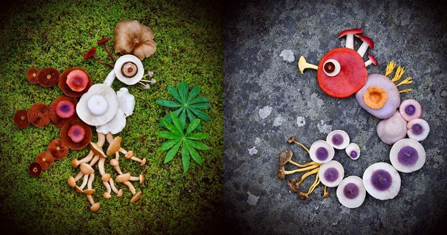 10 Kreasi memukau ini disusun dari jamur liar, kreatif banget