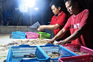 Beli ikan segar sekarang nggak perlu repot ke pasar, tinggal klik aja