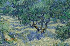 Belalang terjebak di lukisan Van Gogh selama 128 tahun, kok bisa ya?