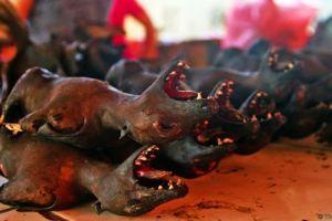 5 Binatang tak lazim ini jadi makanan khas di Indonesia