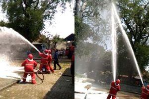Bukan kobaran api, pemadam kebakaran semprotkan air ke sarang tawon