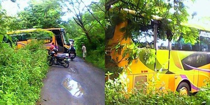bus nyasar hutan berbagai sumber