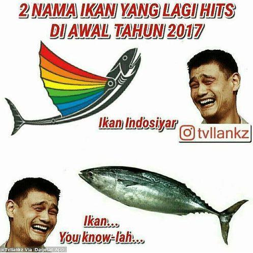 10 Meme Jenis Ikan Ini Recehnya Bikin Tersenyum Kecut