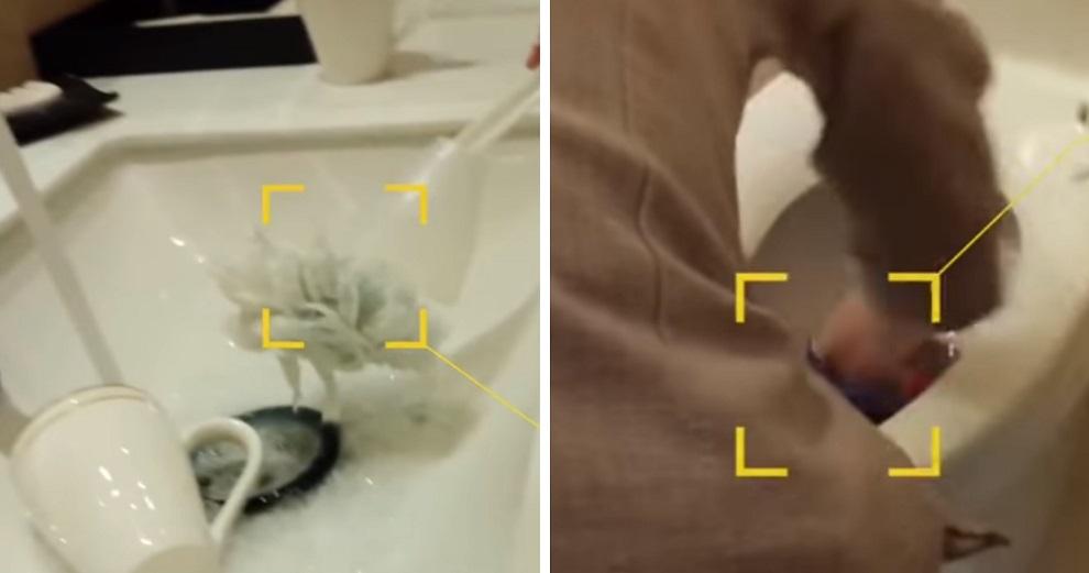 Pegawai hotel ini bersihkan toilet & alat makan pakai sikat yang sama