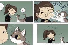 6 Ilustrasi kondisi yang sering dialami cewek ketika pelihara kucing