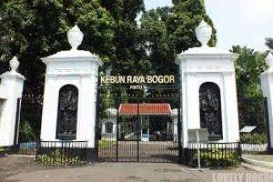 5 Lokasi favorit wisatawan di Kebun Raya Bogor, cocok buat akhir pekan