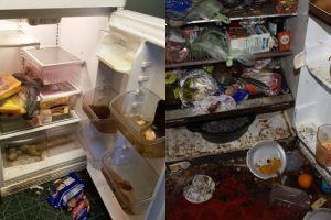 10 Potret kulkas tidak pernah dibersihkan ini dijamin bikin mual