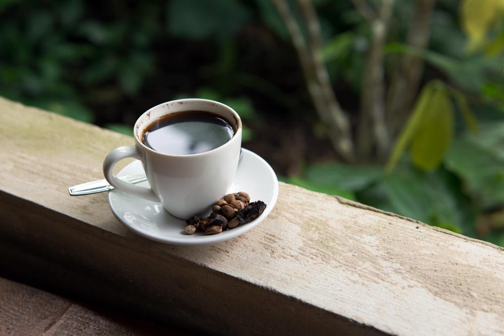 Ada harga ada rasa, ini alasan kopi luwak begitu istimewa