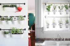 10 Ide unik taman vertikal di dalam rumah yang bisa kamu tiru