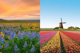 10 Tempat ini tunjukkan bahwa dunia itu penuh warna-warni
