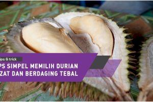 Tips simpel memilih durian lezat dan berdaging tebal