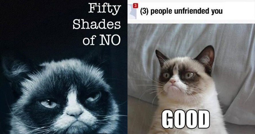 10 Meme Grumpy Cat ini bikin kamu tersenyum sambil geleng-geleng