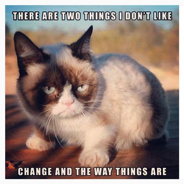 10 Meme Grumpy Cat © 2018 Istimewa