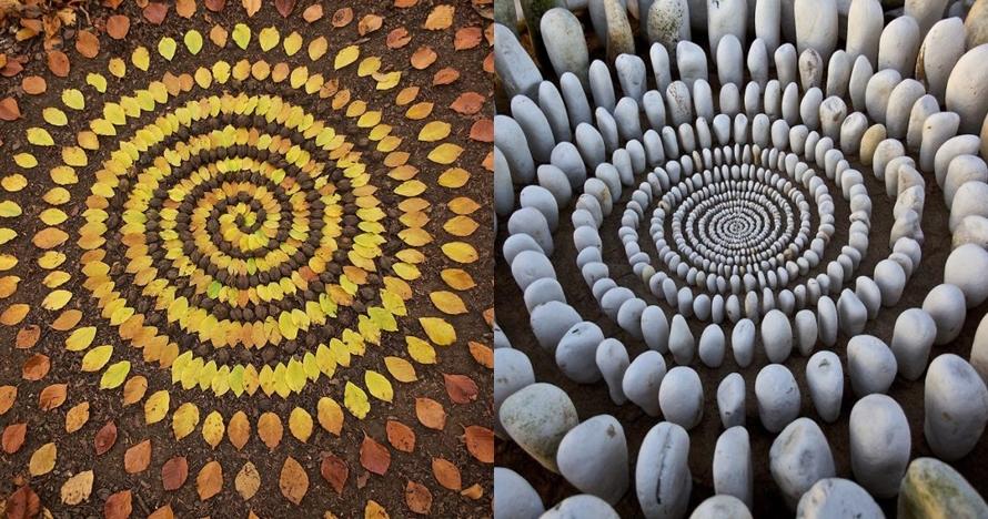 15 Susunan benda alam ini bikin kagum, polanya rapi banget