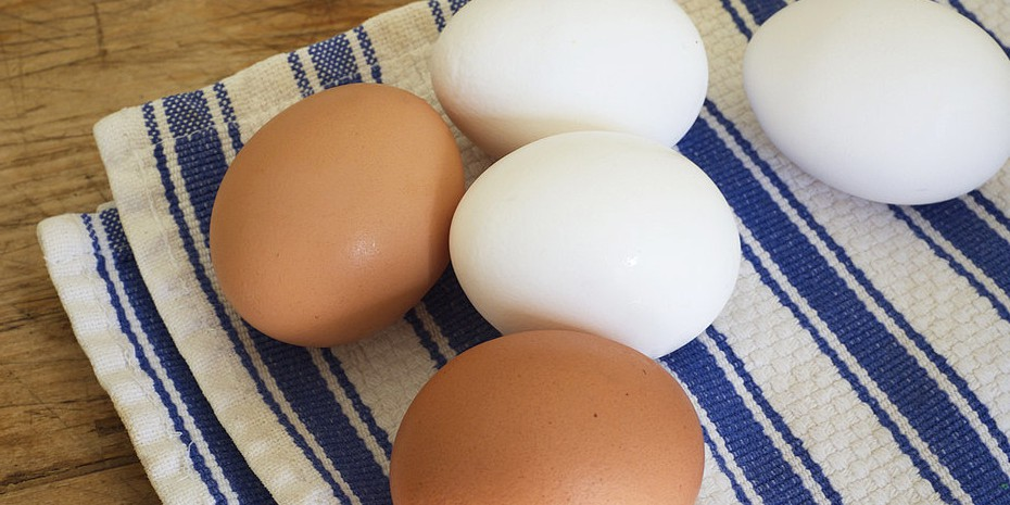 Beda kandungan nutrisi kuning dan putih telur ini jarang orang tahu! © 2016 brilio.net