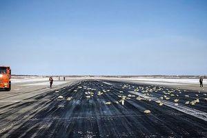 Heboh emas 3,4 ton jatuh dari pesawat, begini penampakannya