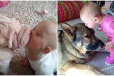 8 Momen mesra anjing cium balita ini bikin harimu cerah ceria